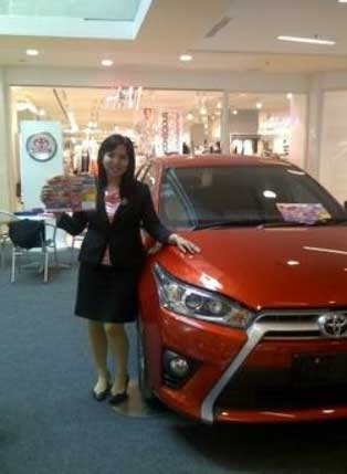 Sales Marketing Mobil Dealer Toyota Shinta